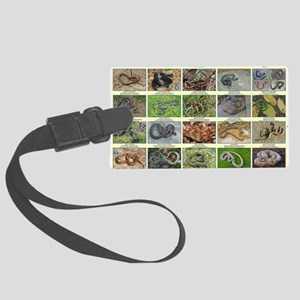snakes of dc Large Luggage Tag