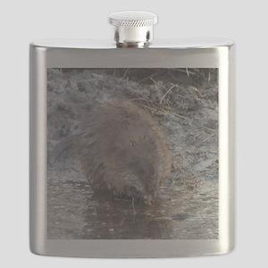 Muskrat Flask