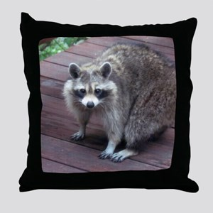 Coon in Daylight Throw Pillow