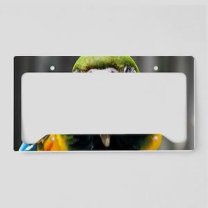 shoulder-cracker License Plate Holder