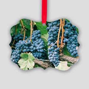 Wine Country Grapes Picture Ornament