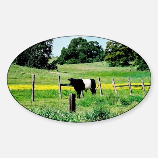 Oreo Cow Sticker (Oval)