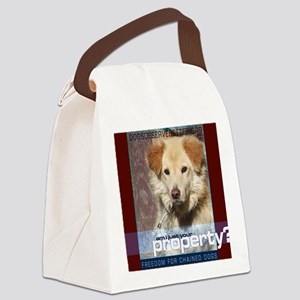 Am I just your Property Canvas Lunch Bag