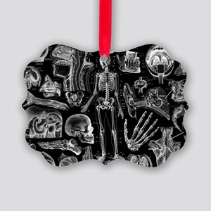 anatomy_black_pillow_cases Picture Ornament