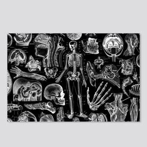 anatomy_black_pillow_case Postcards (Package of 8)