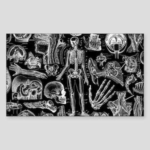 anatomy_black_pillow_cases Sticker (Rectangle)