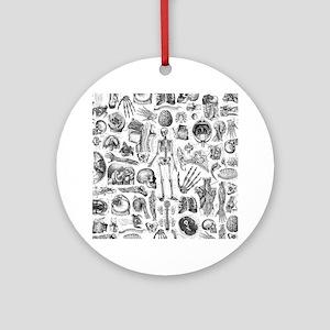 anatomy_W_queen_duvet Round Ornament