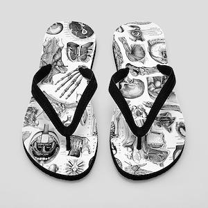 anatomy_W_twin_duvet Flip Flops