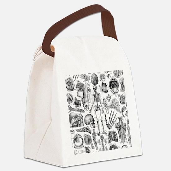 anatomy_W_twin_duvet Canvas Lunch Bag