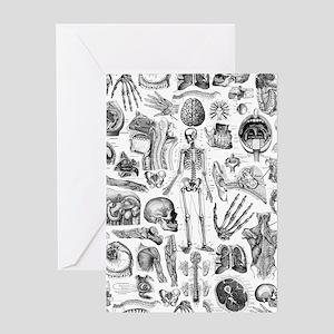 anatomy_W_twin_duvet Greeting Card