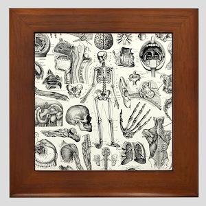 anatomy_W_twin_duvet Framed Tile