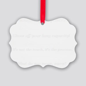 Fencer Thoughts Picture Ornament