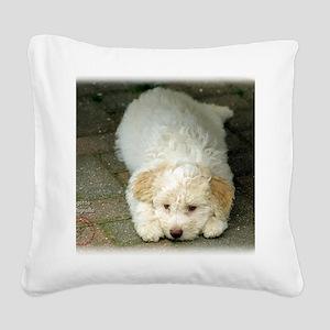 Lagotto Romagnollo 8T22D-12 Square Canvas Pillow