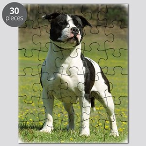 Staffordshire Bull Terrier 9F44D-10 Puzzle