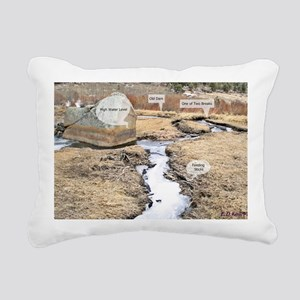 IMG_8473 Old Beaver Pond Rectangular Canvas Pillow