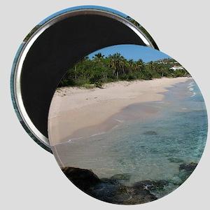 coconut beach Magnet