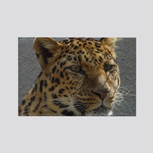 Leopard Rectangle Magnet