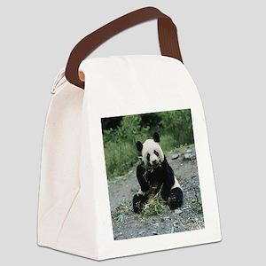 Cute Panda Canvas Lunch Bag