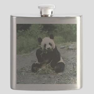 Cute Panda Flask