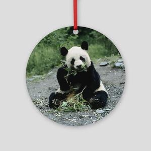 Cute Panda Round Ornament
