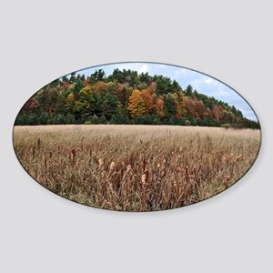 Adirondacks in Fall Sticker (Oval)