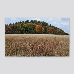 Adirondacks in Fall 3'x5' Area Rug