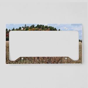 Adirondacks in Fall License Plate Holder