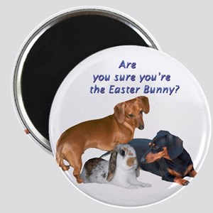 Are you the Easter Bunny Dogs Magnet