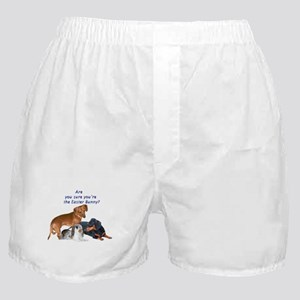 Are you the Easter Bunny Dogs Boxer Shorts