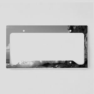 Victoria License Plate Holder