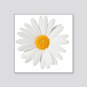 "Daisy Square Sticker 3"" x 3"""