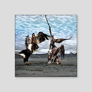 """Bald Eagles Greeting or Con Square Sticker 3"""" x 3"""""""