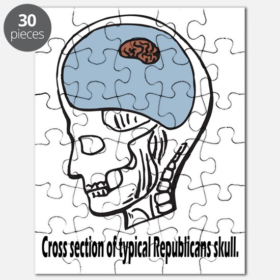 Typical Republican Puzzle