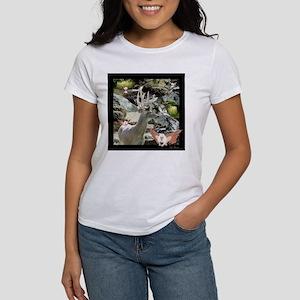 Buck-Waterfalls-Fairies Women's T-Shirt