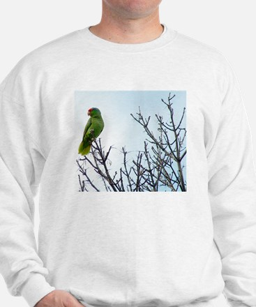 Red Crested Parrot Sweatshirt