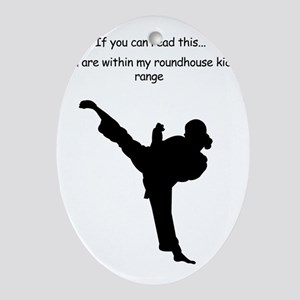 roundhouse kick Oval Ornament