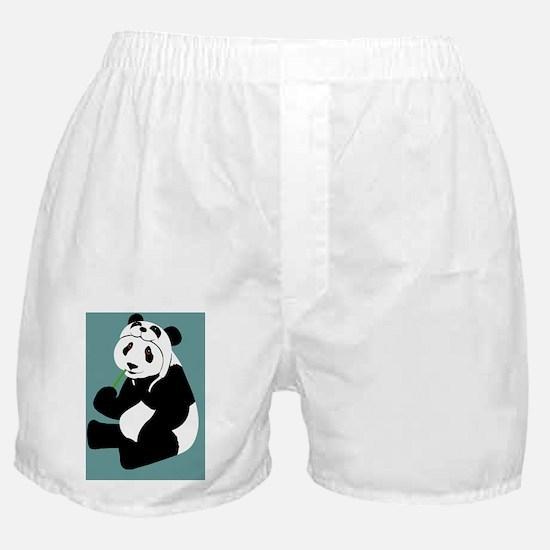 pandahat_ipad2 _B Boxer Shorts