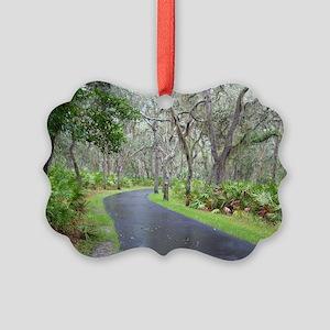 Walk in the Park Picture Ornament