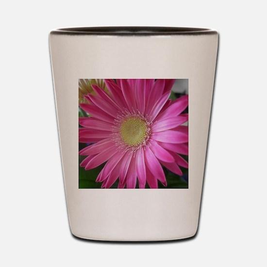 Pink Daisy Princess Shot Glass