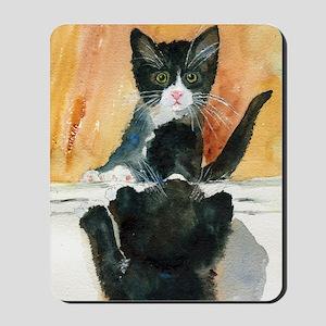 Kitten in the Mirror Mousepad