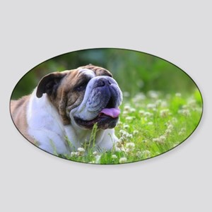 Nora Bulldog Sticker (Oval)