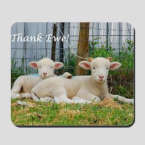 Thank You Cards ~ Buddy Lambs Mousepad