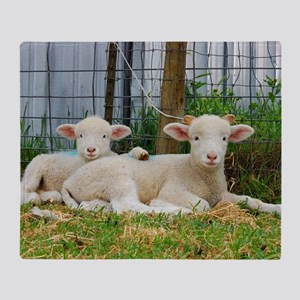 Ewephorics Buddy Lambs Throw Blanket