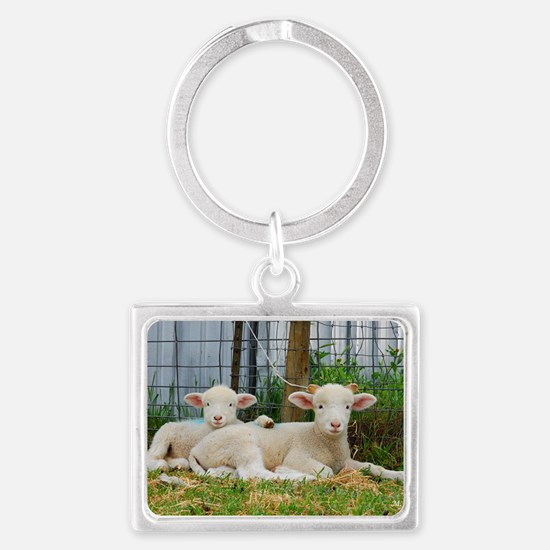 Buddy Lambs-signed by photograp Landscape Keychain