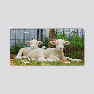 Buddy Lambs-signed by photo Aluminum License Plate