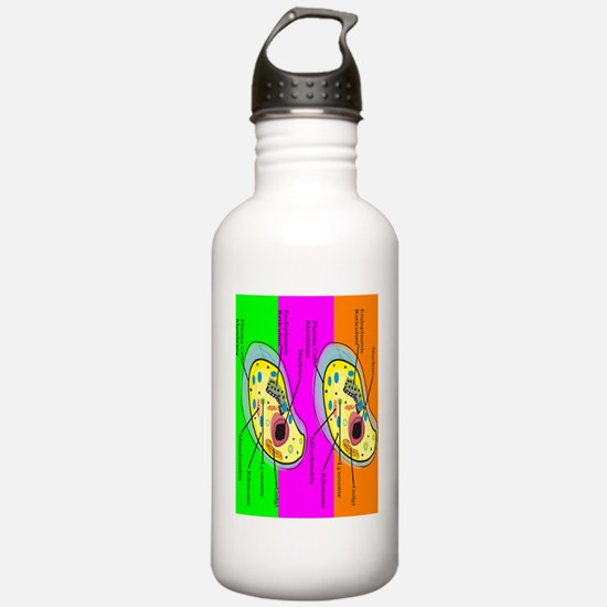ff biology teacher 2 Water Bottle