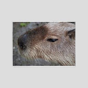 Capybara 5'x7'Area Rug