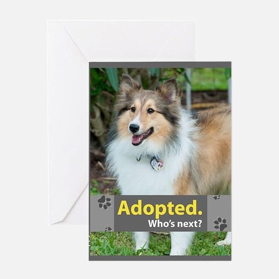 Sheltie ( Shetland Sheepdog ) Greeting Card
