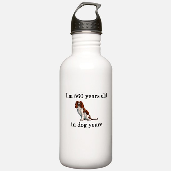 80 birthday dog years springer spaniel Water Bottl