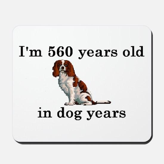 80 birthday dog years springer spaniel 2 Mousepad